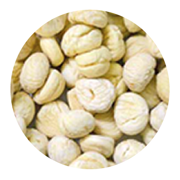 Castagne Pelate Surgelate