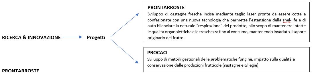 Marchese Castagne - Progetti di Ricerca & Innovazione