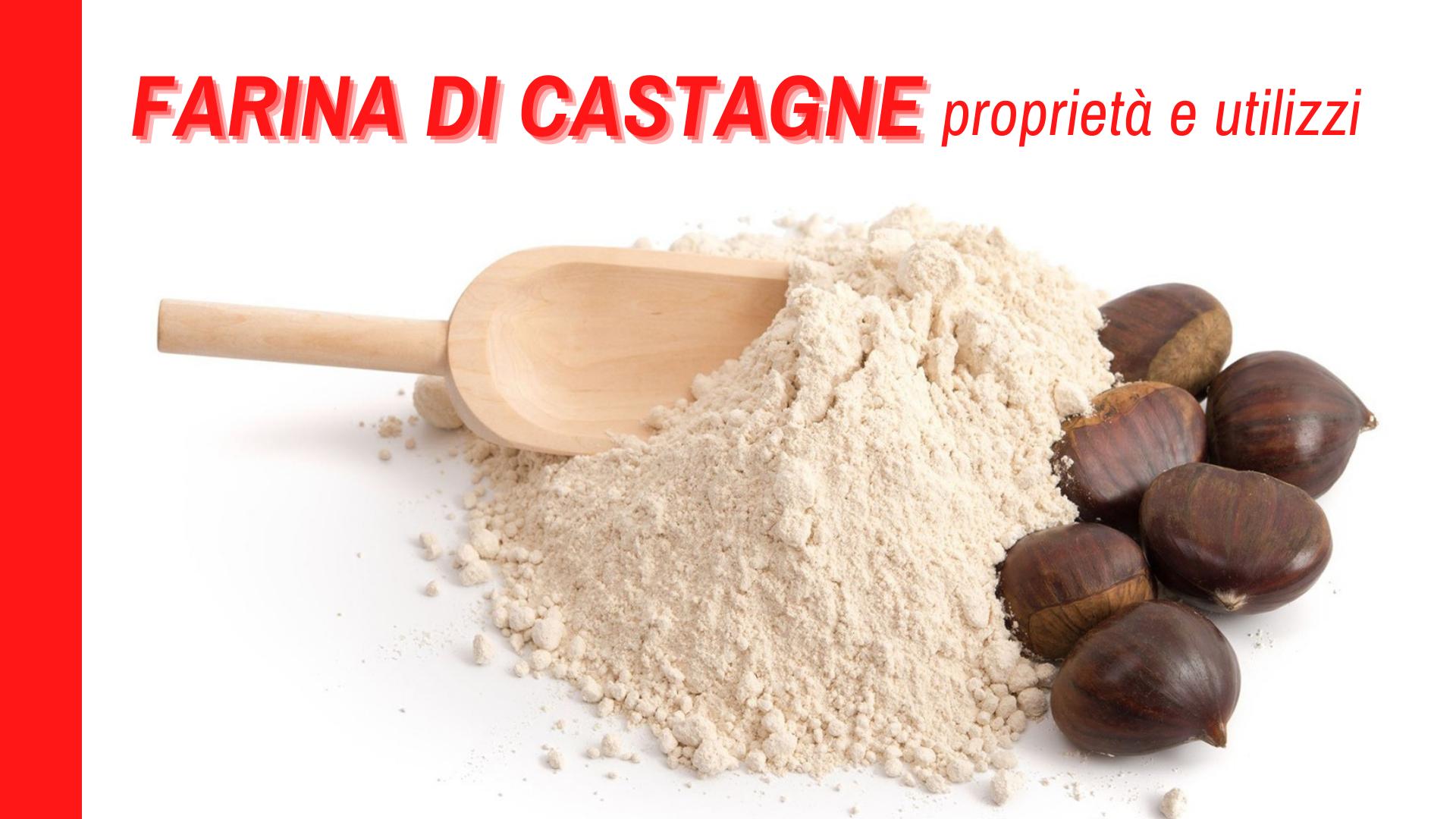 La farina di castagne, un alimento della nostra tradizione da conoscere meglio